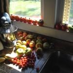 Ripening tomatoes