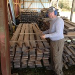 Kendall shows oak lumber stored in the drying shed.