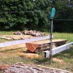 Pecan Tree during sawmilling at Royal Estate