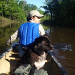 Domino and Claudia hear a gator plop into the water