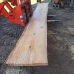 "12' x 24"" + x 2.75"" Pine slab"